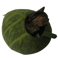 Cat Bed / Cat Cave - Leaf Pod Shaped with Stem, Hand Crafted, 100% Natural Wool, Chemical Free, Machine-washable Beautiful Cat House for Cats with Sensitivities. Seamless, Attractive Design. Woolly Mammoth and Kitty http://www.amazon.com/dp/B011JFH4W6/ref=cm_sw_r_pi_dp_cKCxwb1P6G93Y