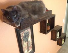 Set of Five Four Floating Cat Shelves One by PorteSueloGoods