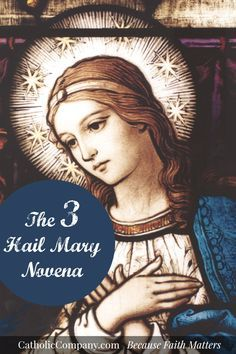 The Efficacious Three Hail Mary Novena  http://www.praymorenovenas.com/