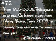 At Disneyland, Christmas music is in the air, decorations line Main Street, and gingerbread smells waft through the park… From 1955-2008, Disneyland used real Christmas trees from Mount Shasta. From 2008 to present, they have used the same faux tree.  This secret comes from the Disney Dose Disneyland Christmas guide audio podcast. Listen for a guide to Disneyland Christmas.
