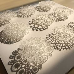 Meredith Woolnough textile artist embroidery art design Australian coral sculpture resin lace