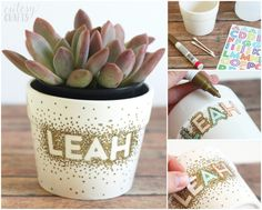 Use a Sharpie to make dots in this unique flower pot craft! It's so easy that a child could do it, and you just need a few simple supplies. MichaelsMakers  DIY Candy