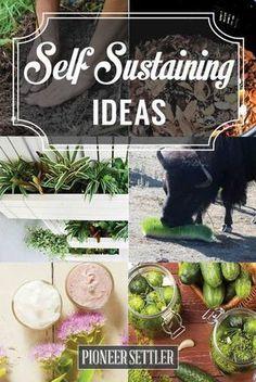 Self-Sustaining Ideas For Living The Homesteader's Dream   Best Homesteading Tips For Beginners by Pioneer Settler at http://pioneersettler.com/self-sustaining-ideas-living-homesteaders-dream/