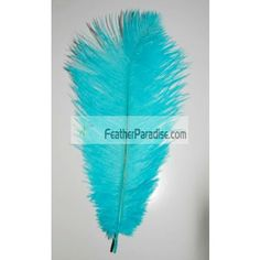 Turquoise Ostrich Feathers Wholesale 100 Pieces 6-8 inch