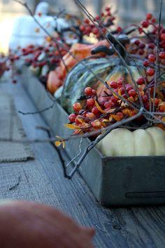 Sweet Something Designs: Harvest Gathering Tablescape