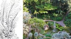 Giardini La Mortella is the spectacular subtropical and mediterranean garden developed since 1956 by the late Susana Walton, Argentinian wife of the British composer Sir William Walton. It is near Forio, a village in the Island Ischia, in the bay of Naples.