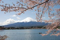 http://www.japanesesearch.com/wp-content/uploads/2014/06/9244608241_625646ce1d_z1.jpg