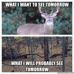 18 entries are tagged with funny deer hunting jokes. I see you Over deer! Deer Hunting Memes, Deer Meme, Deer Puns, Funny Hunting Pics, Funny Deer, Funny Rap Songs, Big Deer, Redneck Humor, Rednecks