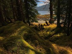 Haida Gwaii Watchmen – Visitors can see evidence of long houses at Tanu and hear tales about ghostly sounds.