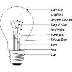 1878: Light Bulb - Joseph Swan.   When   Pinterest   Bulbs, Swans ...:#SHRI Group Stages of Evolution of light. Invention of Halogen Bulbs, Year  1956,Lighting