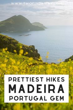 Madeira is filled with stunning hikes and walks for all types of travelers. Check our complete guide to the best hikes and walks in this Portuguese island! Madeira island is a dream destination in Portugal I Hikes and Walks in Madeira I Madeira Itinerary I Travel Guide I Travel Tips for Madeira Portugal #Madeira #Portugal #travelguide #hikingguide #traveltips Portugal Travel Guide, Europe Travel Guide, Spain Travel, Visit Portugal, Spain And Portugal, Hiking Guide, Hiking Trails, Best Hikes, Travel Inspiration