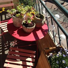 Un petit balcon fleuri à Toulouse