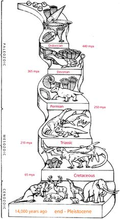 Geologic Time Scale with Index Fossils and Pictures