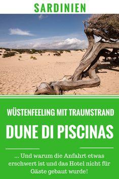 In der Dune di Piscinas auf Sardinien kommt das Gefühl von Wüste auf. Der Traumstrand ist aber noch viel mehr, als nur ein Haufen Sand ...