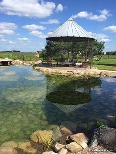 Natural Swimming Pool/Pond with Gazebo
