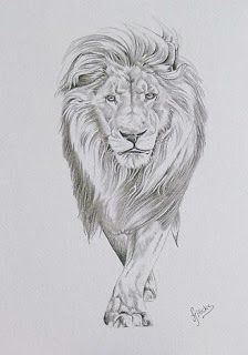 Graffiti Art Design: lion sketch graffiti design