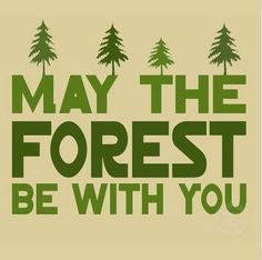 may the forest be with you - gardens, forest, star wars