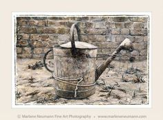 WATERING CAN...a few years ago I took a trip to India..I worked in a retreat centre where I did kitchen and garden duty...I spent 3 weeks there..this was the only photograph I took in all that time...It sums up my experience..hard working people. The rustic beauty, the humbleness, yet strong and deeply held together by their connection to the Divine...for me this image radiates the Love that is deep within all of us..Some will only see a rusted can others will see beyond that...what do you…