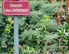 chemin LAYDERNIER