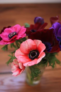 first anemones of 2015 – first bouquet of the year | Madame love