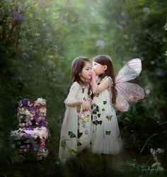 Butterfly222733