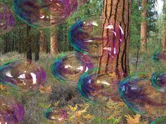 Bubblessss!