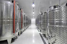 Οινοποιείο / Winery - Αμπελώνες Αντωνόπουλου / Antonopoulos Vineyards