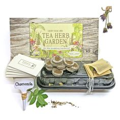 Grow and Make DIY Tea Herb Garden Kit - Learn the basics of herbalism with five seed varieties to grow at home!
