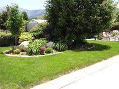 Beautiful landscaped yard