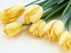 My grandmother always said fresh flowers tell company your house is clean-my go to, yellow tulips, fresh bold and clean.