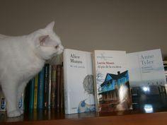 Carmela tenía claro cuáles eran los libros que la habían enamorado, pero faltaba el visto bueno. Ahora ya está, Rodi dice que sí, adelante con Alice Munro, Anne Tyler, y Lorrie Moore, ¡¡que todo quede entre mujeres!