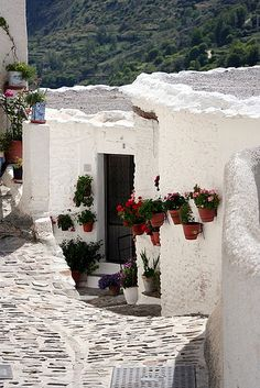 SPAIN / Andalucía - The White Towns of Andalusia, or Pueblos Blancos, are a series of towns and large villages in the provinces of Cádiz and Málaga in southern Spain. All of the villages are characterised by whitewashed walls and red or brown tiled roofs.- La-Alpujarra Granada  Spain