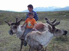The Reindeer People: http://2secondstreet.wordpress.com/2013/08/04/the-reindeer-people/  A short primer on my journey to visit the Tsaatan (Reindeer People).  Picture taken on the Eastern Taiga, Khuvsgul aimag, Mongolia.