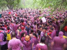 Haro (La Rioja) es famoso por su archiconocida Batalla del Vino. Cada 29 de junio, los habitantes y curiosos se embarcan en la lucha lanzándose litros de vino tinto para terminar el día en una fiesta tradicional teñida, literalmente, de color rosa. http://lonelyplanet.es/blog-batallas-de-comida-en-espana-410.html