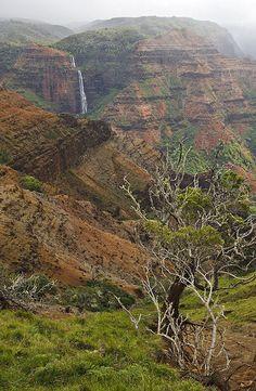 Waimea Canyon State Park, located on the western side of Kauaʻi, Hawaii