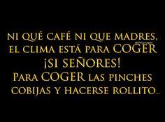 Así mero!!!! Buenos y fríos días!!!!! Funny Adult Memes, Mexican Humor, Mexican Funny, Quotes En Espanol, Humor Mexicano, Frases Humor, Funny Times, Just Kidding, Coffee Quotes
