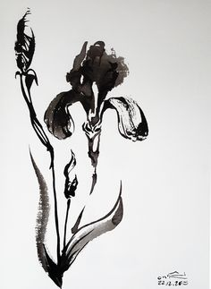 Iris - ink flow    This painting is original painting made and signby Iris gat (22 december 2015).    The size is: 16.5x22.5cm    The technique art is intuitive painting with chinese brush and ink on paper.    It's possible to order the painting in different sizes.    To see more iris's art: http://www.irisgat-art.com | Shop this product here: spreesy.com/irisgat-art/29 | Shop all of our products at http://spreesy.com/irisgat-art    | Pinterest selling powered by Spreesy.com