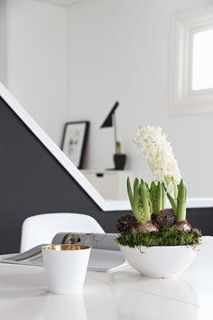 centro mesa con jacintos