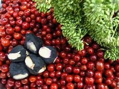 Image Search Results for indian jujube fruit