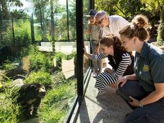 いいね!326件、コメント3件 ― National Zoo Canberraさん(@nationalzoo)のInstagramアカウント: 「Come face to face with creatures great and small during your next visit to the Zoo and book ahead…」