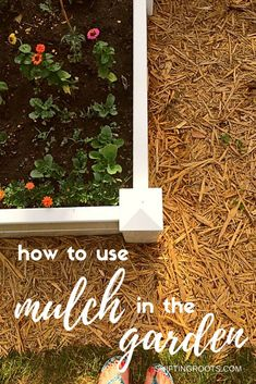 Grow Vegetables Creating a low maintenance landscape in your garden, backyard, front yard, or flower bed is so easy with mulch! I'll show you how to lay mulch as an alternative to constant weeding. Permaculture Design, Permaculture Farming, Low Maintenance Landscaping, Low Maintenance Garden, Landscape Maintenance, Container Gardening, Gardening Tips, Vegetable Gardening, Organic Gardening