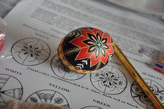 Ukrainian Eggs -- Community Chickens