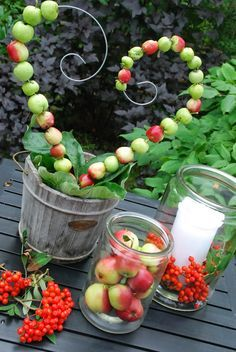 More hagebutten Tinker with apples. More - Diy Fall Decor Fall Home Decor, Autumn Home, Nature Crafts, Fall Crafts, Wood Trellis, Deco Nature, Apple Harvest, Deco Floral, Wood Working For Beginners