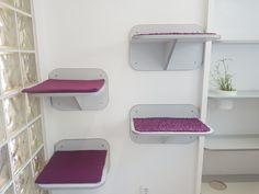 Pokoj 1 - VIP Apartmá Cat Hotel, Shelves, Luxury, Cats, Vip, Table, Furniture, Home Decor, Shelving