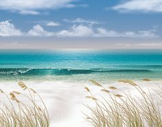 Beach Wallpaper Border | Border Store Online: BEACH WALL MURALS