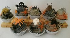 Check out this item in my Etsy shop https://www.etsy.com/listing/205216449/spooktacular-soapy-cupcakes