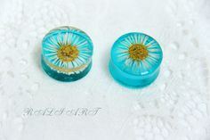 Flesh tunnels plugs, real daisy resin plugs, Resin real flower, blue plugs, Plug Earrings, Plug Earrings resin, transparent plugs by RALIJEWELLERY on Etsy