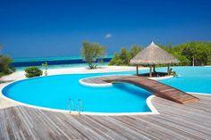 Swim-up Bar.  #Swimsuitsforall #BeachBelle #PinYourParadise
