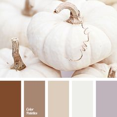 """""""dusty"""" brown, """"dusty"""" lilac, beige, chocolate color, gray and beige, gray-lilac, lavender, light beige, light brown, off-white, shades of brown, shades of coffee with milk."""