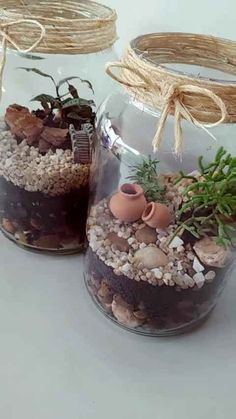 DIY Mason Jar Crafts - With a few crafty touches, you can turn ordinary jars . Succulent Terrarium, Succulents Garden, Flower Gardening, Container Gardening, Diy Home Crafts, Garden Crafts, Beach Crafts, Mason Jar Crafts, Mason Jars